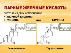 Желчная кислота
