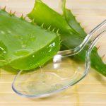 Использование сока алоэ для лечения дёсен и зубов