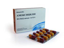 Флемоксин или амоксициллин?