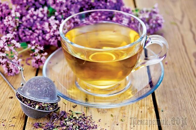чашка чая с душицей
