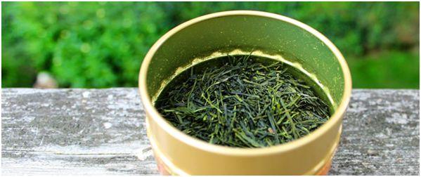 иголочки чая сенча
