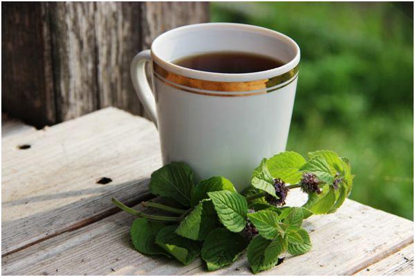 кружка черного чая и мята