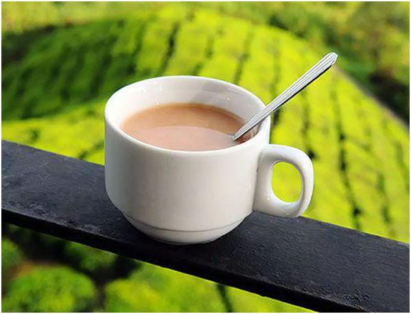 молочный чай