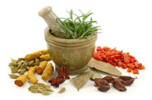 Травы для снижения холестерина в крови