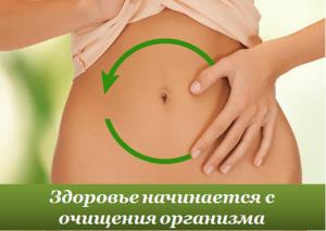 Лечение печени расторопшей