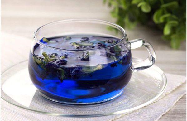 синий чай из клитории