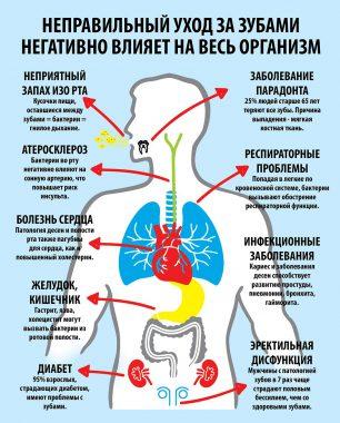 влияние зубов на другие органы