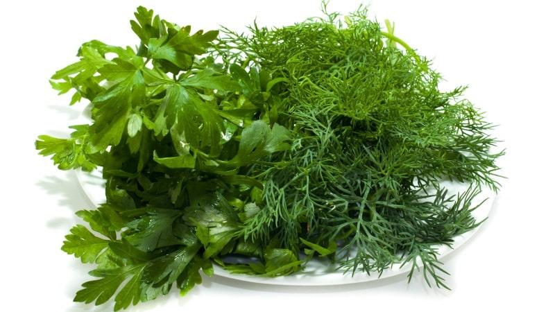 Петрушка, укроп и другие травы уничтожают бактерии, вызывающие кариес.